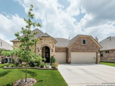 Helotes Single Family Home New: 10406 Palmera