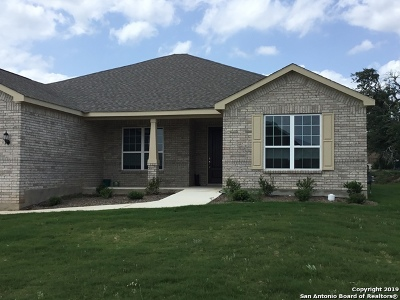 San Antonio Single Family Home New: 12903 Hollow Cave