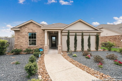 Cibolo Single Family Home New: 246 Holland Park
