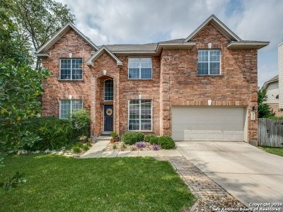 Stone Oak Single Family Home New: 906 La Cascada