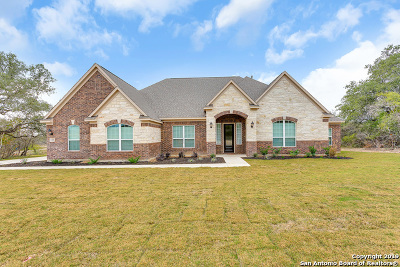 Castroville Single Family Home For Sale: 162 Texas Bend