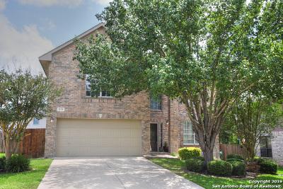 San Antonio TX Single Family Home New: $310,900