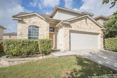 San Antonio TX Single Family Home New: $233,000