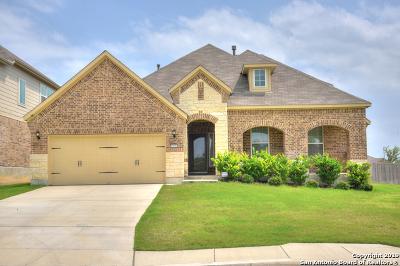 San Antonio Single Family Home New: 12850 Sabinal River