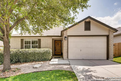San Antonio TX Single Family Home Active Option: $187,500