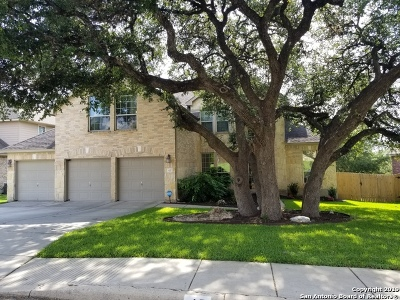 San Antonio Single Family Home New: 47 Sable Valley