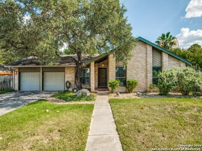 San Antonio Single Family Home New: 2610 Shadow Cliff St