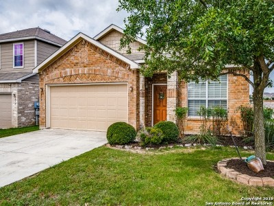 San Antonio Single Family Home New: 3439 Mentone Way
