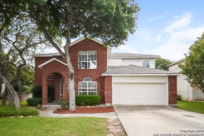 San Antonio Single Family Home New: 8527 Braun Path