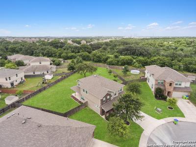 San Antonio Single Family Home New: 499 Perch Horizon