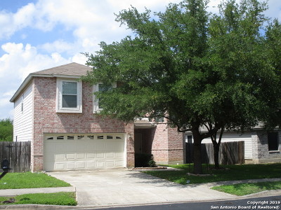 Converse Single Family Home New: 8515 Lone Shadow Trail