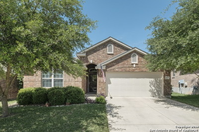 San Antonio Single Family Home New: 25039 Elwell Pt