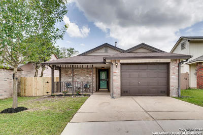 San Antonio Single Family Home New: 11326 Potter Valley