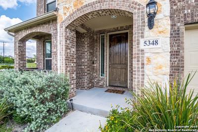 San Antonio Single Family Home New: 5348 Saffron Rose