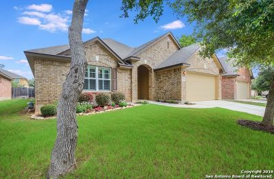 Helotes Single Family Home Active Option: 9039 Western View