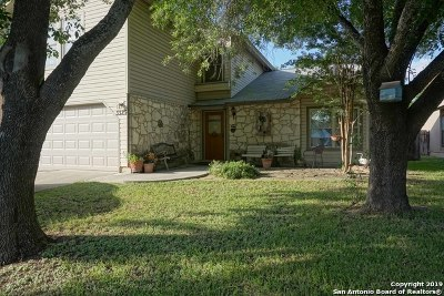 San Antonio TX Single Family Home New: $319,000