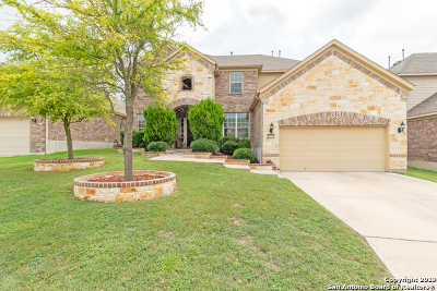 San Antonio TX Single Family Home New: $300,000