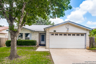 San Antonio Single Family Home New: 10462 Alpine Village