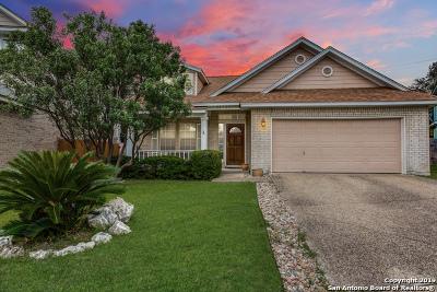 Stone Oak Single Family Home For Sale: 20123 Horizon Way