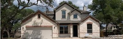 Boerne Single Family Home For Sale: 296 Woods Of Boerne Blvd