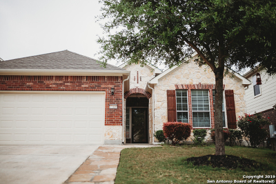 Bexar County, Kendall County Single Family Home Active Option: 27446 Camino Tower