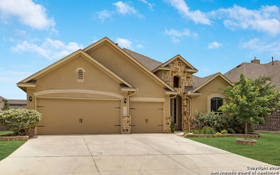Bexar County Single Family Home Active Option: 12118 Upton Park