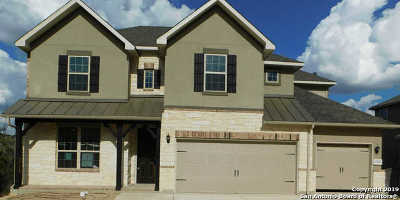 New Braunfels Single Family Home For Sale: 1294 Hidden Cave