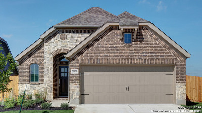 Seguin Single Family Home For Sale: 3004 Grove Terrace