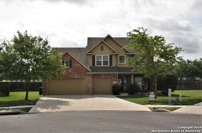 Cibolo Single Family Home Active Option: 329 Irwin Way