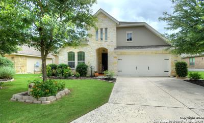 Boerne Single Family Home For Sale: 27602 Dana Creek Dr
