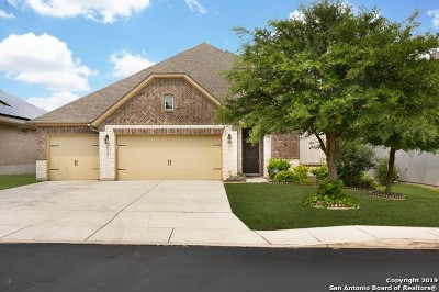 Bexar County Single Family Home For Sale: 11443 Wake Rbn