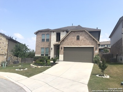 Boerne Single Family Home For Sale: 8323 Kerria Landing