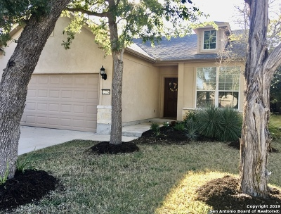 Bexar County Single Family Home For Sale: 12754 Cascade Hls