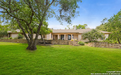 Boerne Single Family Home For Sale: 206 Mountain Spring Dr