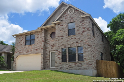 Bexar County Single Family Home For Sale: 12034 Vintage Pt