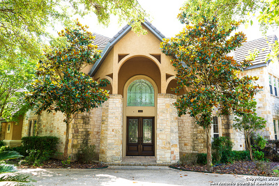 Stone Oak Single Family Home For Sale: 41 Persimmon Path