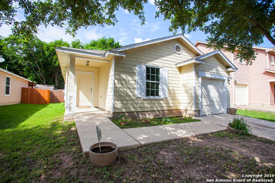 Austin Single Family Home For Sale: 2012 Nogales Trail