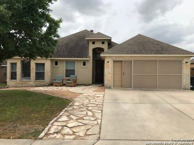 New Braunfels Single Family Home Active Option: 2334 Sean St