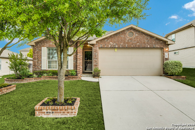 Cibolo Single Family Home For Sale: 761 Fountain Gate