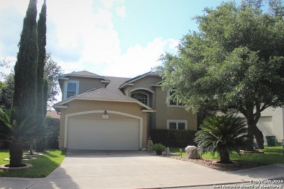 Stone Oak Single Family Home New: 21203 La Pena Dr