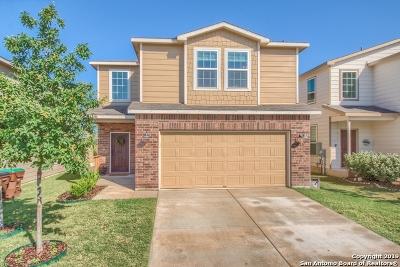 Single Family Home Active Option: 10231 Castello Canyon