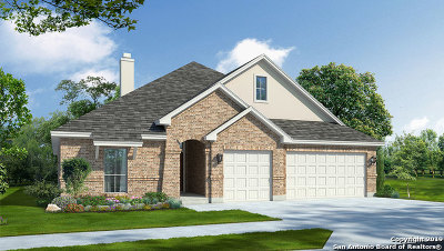 Cibolo Single Family Home For Sale: 225 Kilkenny