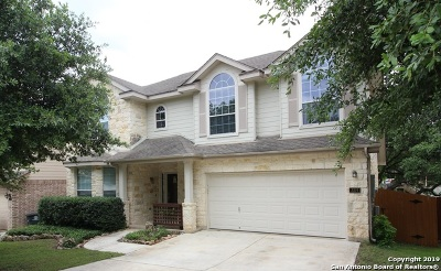 New Braunfels Single Family Home For Sale: 3219 Espada