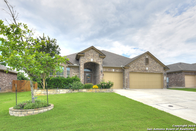 Boerne Single Family Home For Sale: 113 Hagen Dr
