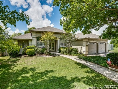 New Braunfels Single Family Home Active Option: 838 Castle Hill