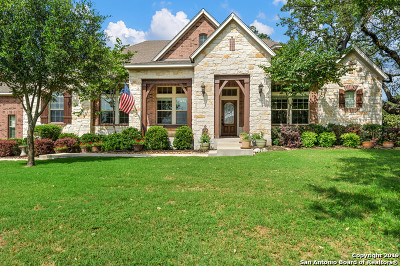 New Braunfels Single Family Home For Sale: 510 Panarama Pl