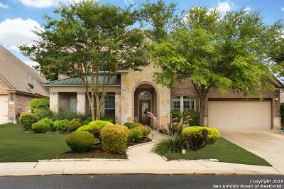 San Antonio Single Family Home For Sale: 24834 Cloudy Creek