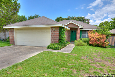 New Braunfels Single Family Home Active Option: 920 Northpark Ridge