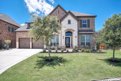 New Braunfels Single Family Home For Sale: 628 Sydney St