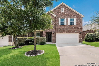 Boerne Single Family Home For Sale: 27419 Camino Hvn